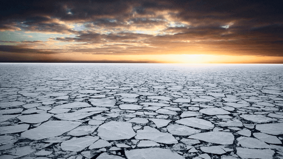 Planet Health Report: SEA ICE