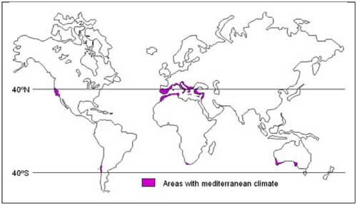 Nasa climate kids outlined map of world showing area with mediterranean climate in purple gumiabroncs Choice Image