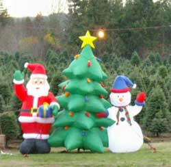 Inflated Santa, Christmas tree, and snowman, in front of rows of planted Christmas trees.