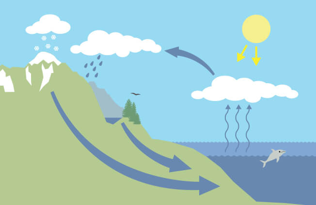 Illustration of the water cycle.