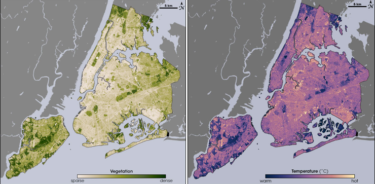 Two satellite map images of New York City showing the cooling effects of plants on the city's heat