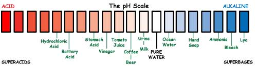 Drawing of the pH scale, with the most acidic reading of -5 on the left and the most alkaline reading of 14 on right. Example substances are shown, with their pH levels: Pure water has pH of 7, tomato juice is 4, battery acid is 0. Ocean water is 8.