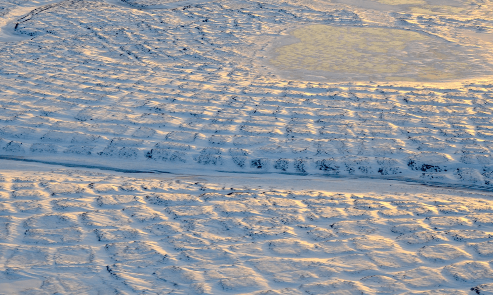 A photo of white snow on the frozen ground