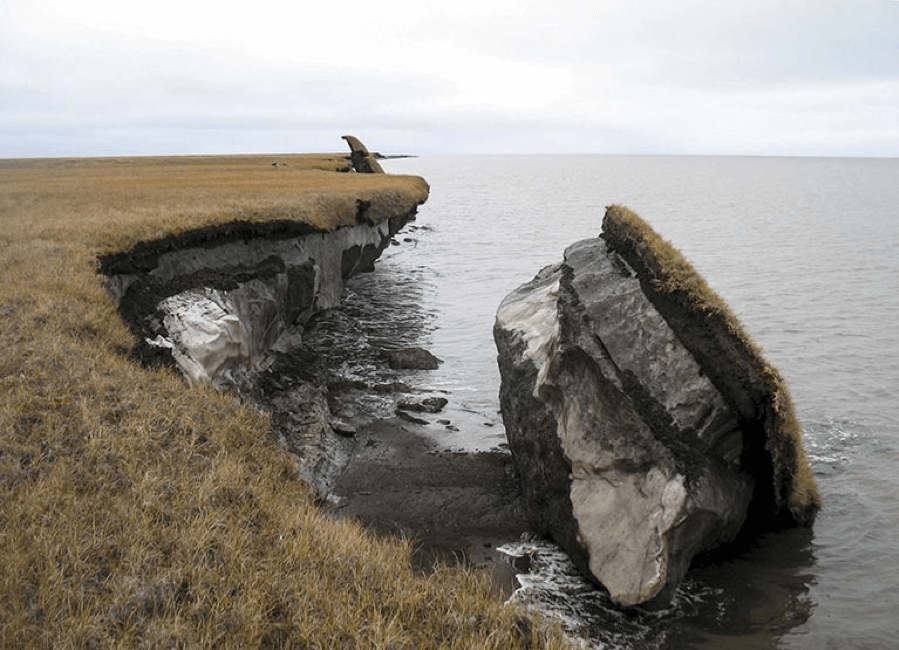 A photo showing a block of thawed permafrost with vegetation on top that broke off and fell into the ocean