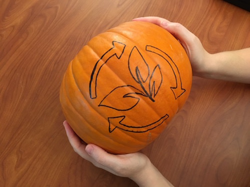 a marker is used to trace the shape of a carbon cycle on a pumpkin