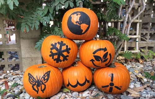 a picture of a pumpkin six pumpkins painted in black with climate-themed stencils