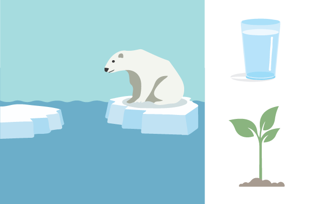 An illustration of a polar bear on ice, a plant, and a glass of water.