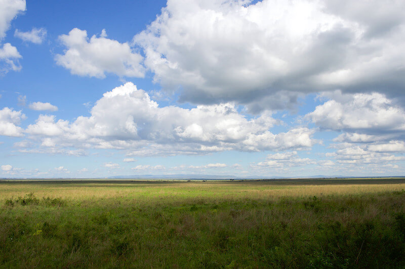 A photograph of white clouds against a blue sky over the savannah in Kenya