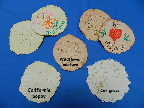 Nasa Climate Kids Make Seed Paper